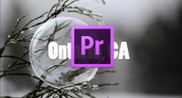 How to Create a Quick Professional Text Reveal in Adobe Premiere Pro CC (2018)