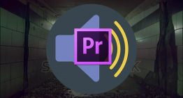 How to Add Echo and Reverb in Adobe Premiere Pro CC