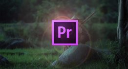 How to Make a 2D Image 3D in Adobe Premiere Pro CC (2018)