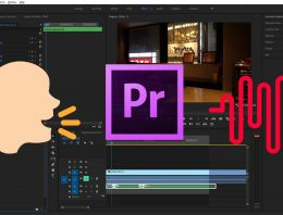 How to Add a Voice Echo in Adobe Premiere Pro CC 2019
