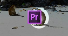 How to Create a Video Highlight in Adobe Premiere Pro CC